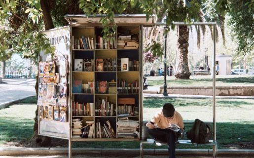 outdoor library under a tree with person reading