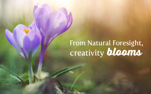 """Blossoming purple flowers with text overlayed, """"From Natural Foresight, creativity blooms."""""""
