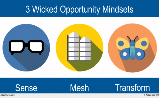 3 Wicked Opportunity Mindsets: Sense, Mesh, Transform